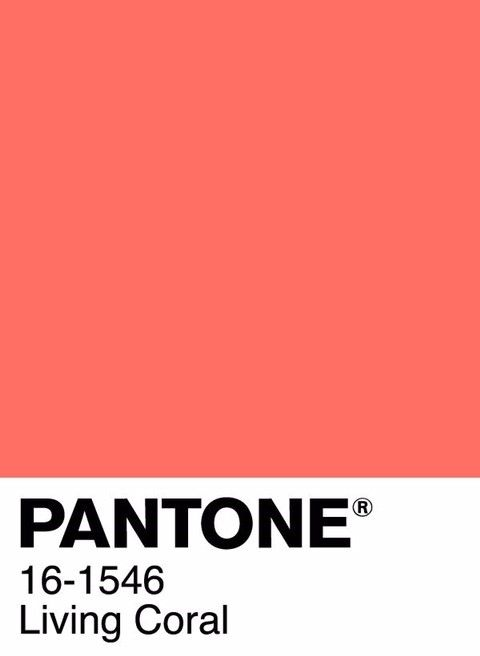 a-cor-do-ano-pantone-living-coral-blogst